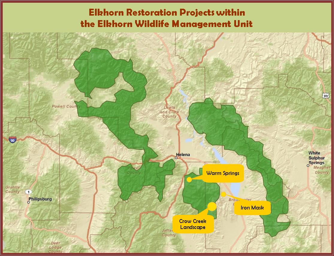 Elkhorn Restoration Projects